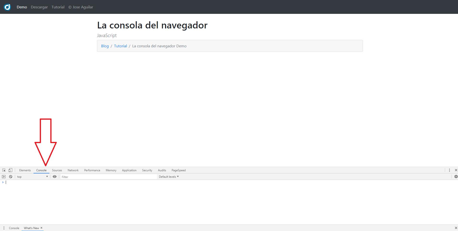 Consola del navegador Google Chrome